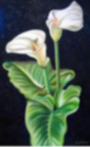 Lilies-2009.jpg