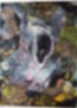 Moogie-2006