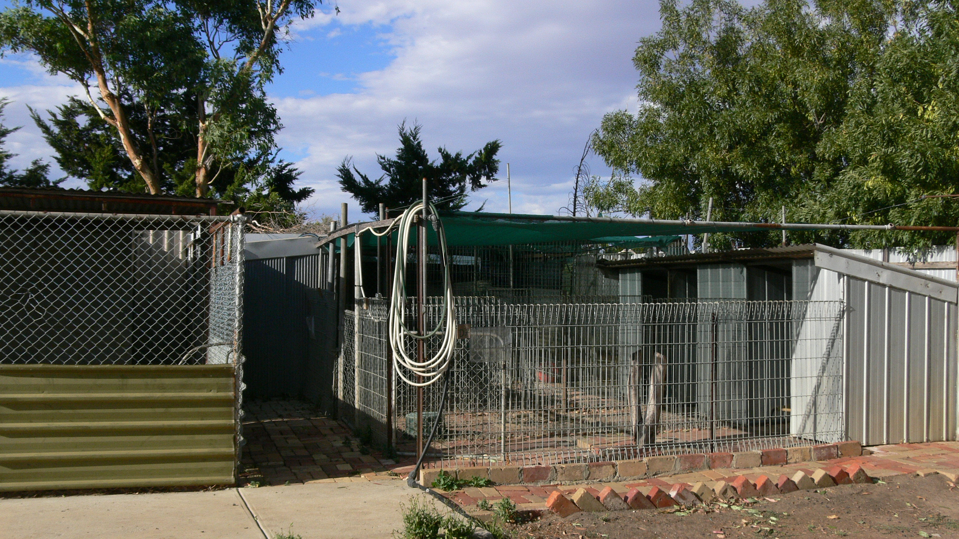 Prisma pro interior plat series amp tech series - Sampenny Dog Kennels And Cattery Melbourne Some Outdoor Areas