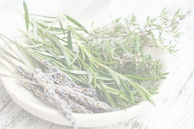 herbs%20pixa_edited.jpg
