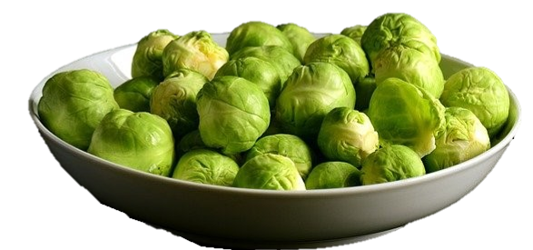Brussels sprouts brassica cruciferous vegetable