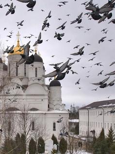 Боровский монастырь d0b2e7726b15bdf6897e853a8e9f5469.jpg