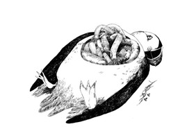 puffin#.jpg