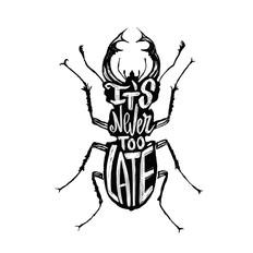 scaraf_piccolo.jpg