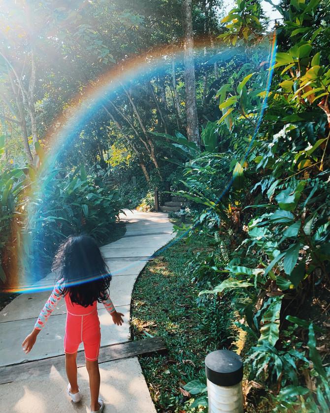 Mamas Should Chase Rainbows, Too