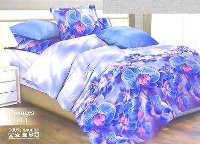 Орхидея Р.jpg