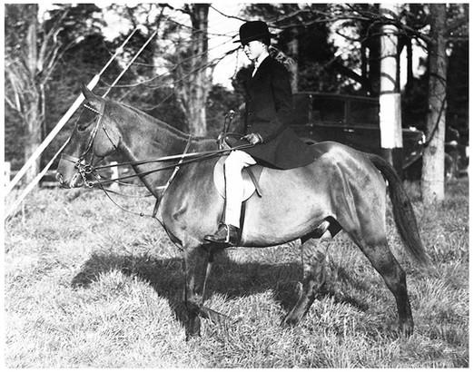 Mary Zimbalist : Photographs : Mary on horse