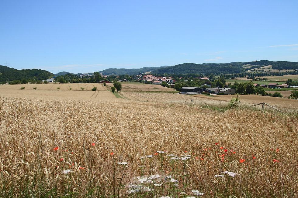 Landwirtschaftlicher Informationspfad Herleshausen