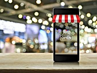 On Line Portal.jpeg