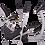 Thumbnail: XR4 Elliptical