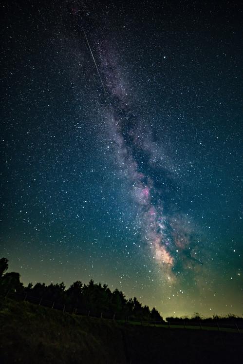 「木々と天の川」星取県フォトコンテスト優秀作品