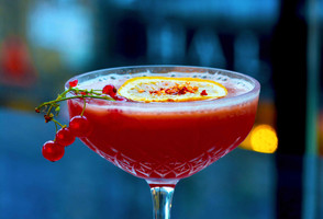 Drink Portfolio 27