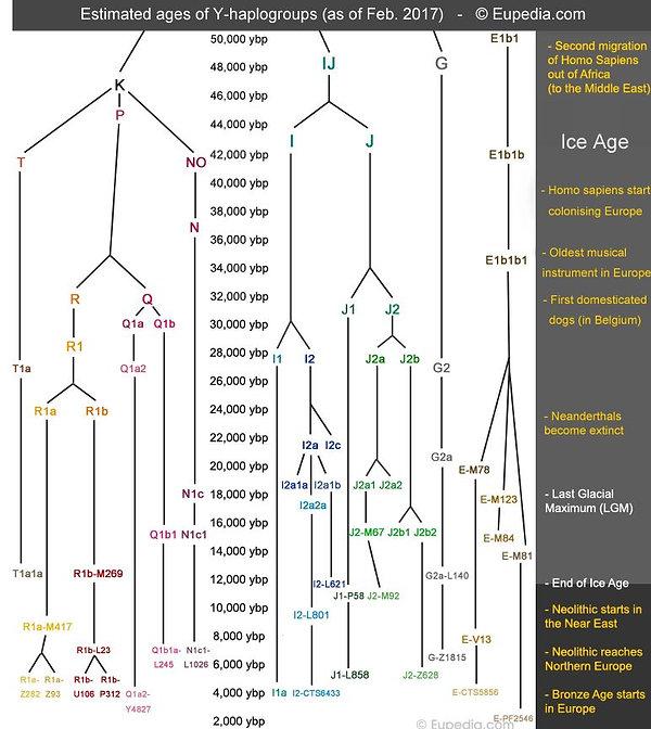 History of Genetics | March Rgp 2019