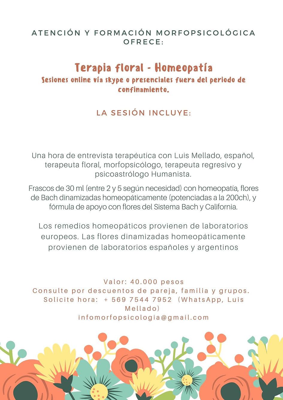 Afiche terapia floral.jpg