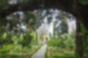 4783139356_f9e596213e_o.jpg