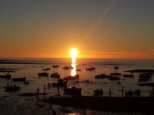 sunset-539743_1920.jpg