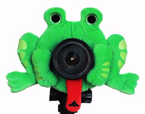 Fascinating Frog