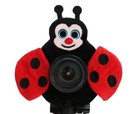 Lovable Ladybug