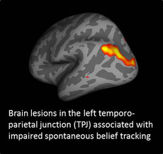 Posterior left TPJ plays a critical role in tracking spontaneously other people's thoughts
