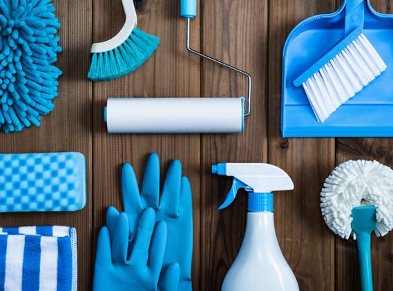 Limpeza Domestica