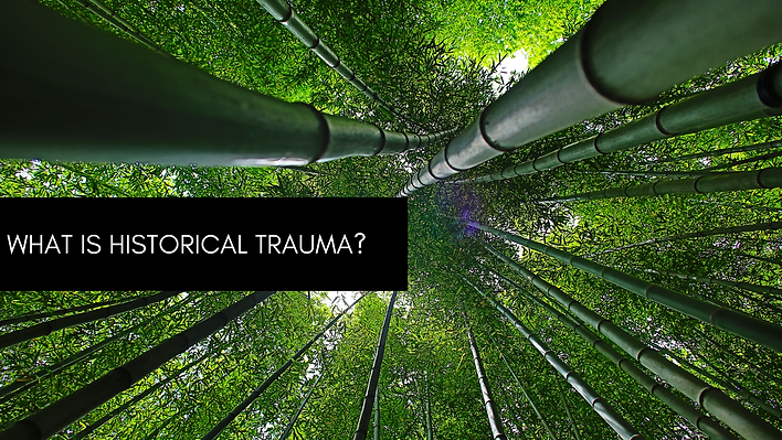 WHAT IS HISTORICAL TRAUMA_ (2).png