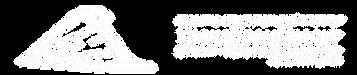 Логотип ПИИ ТПП (белый).png