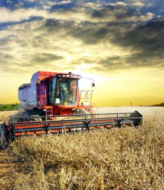 Brazil's Farmers Hoarding Soybeans