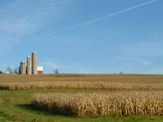 Tyson signs agreement to purchase three of The Andersons grain elevators