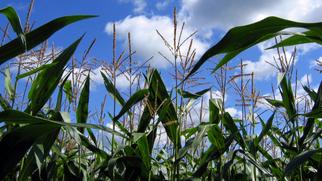 POET Begins $120M Expansion at Ohio Ethanol Plant