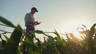 """Bushel Acquires Farmlogs to Create Integrated Experience And a """"Grain Passport"""""""