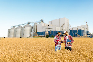 This Partnership is Developing Mobile Tech to Measure Quality of Grain