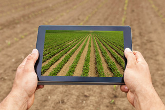 Calling All Agtech Entrepreneurs: Soy Innovation Challenge Announced by USB and the YLI