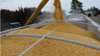 Scoular Acquires Kansas Grain Handling and Processing Facility