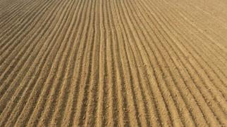 Syngenta Invests in Premier Crop Science