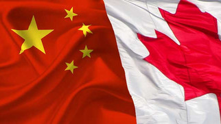 Canadian Canola Farmers Victims of Political Tensions with China