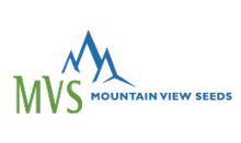 mvseed_logo.jpg