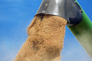 New Grain Terminal Coming to Quebec