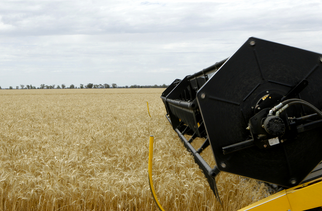 ADM, Bunge, Cargill, and Louis Dreyfus Partner to Bring Tech to the Grain Supply Chain