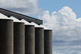 Wheat Growers, North Central Farmers Elevator Voting on Merger
