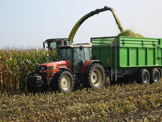 This is Why the U.S. Share of the Global Corn Export Market is Shrinking