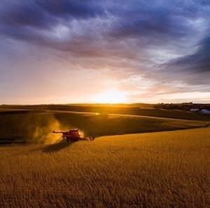 Macquarie Places Lawson Grains on the Market