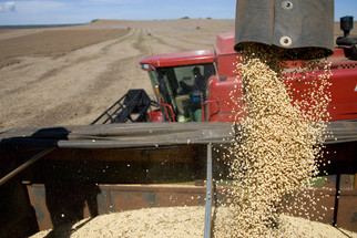 A Year After China Stopped U.S. Soybean Purchases, U.S. Farmers Look to Other Asian Markets