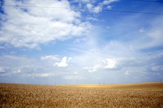 Ukraine's Kernel Selling its 50 Percent Stake in Taman Grain Terminal