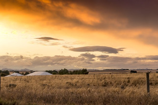 New Forests and AIMCo Acquire Lawson Grains From Macquarie for $600M