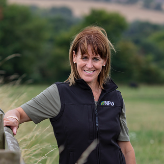 Executive Profile: Minette Batters, President of NFU