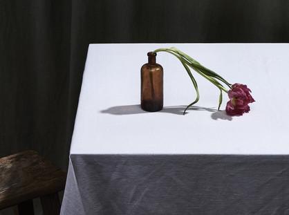 Geelong Contemporary talks art in a virtual world