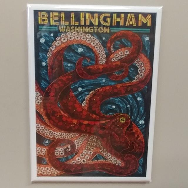 Octopus Bellingham Magnet