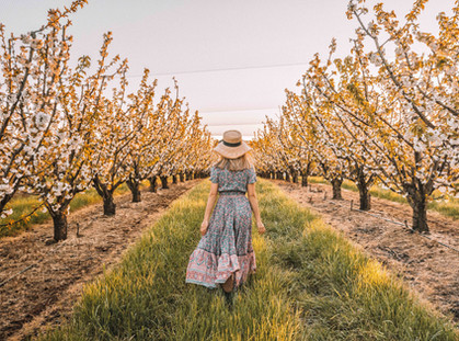 Yarra Valley Garden Party shows off the glories of spring
