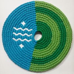 Bellingham Flag Pocket Disc