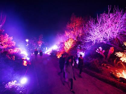 GLOW WINTER ARTS FESTIVAL ILLUMINATES THE WONDERS OF WINTER